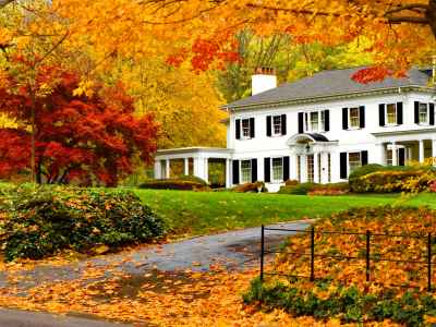 Buying A House In The Fall